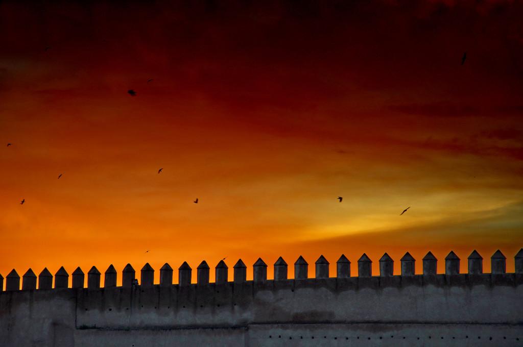 Fez, the birds and the sunset